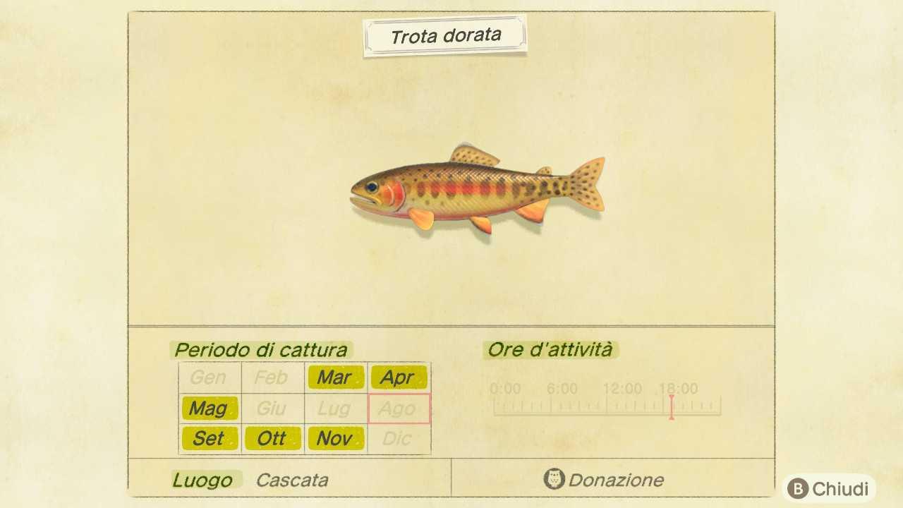 Mestizaje de animales: Nuevos horizontes, peces e insectos de septiembre