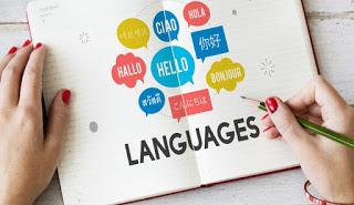 Traducir en línea