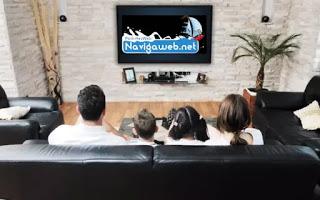Tamaño y distancia del televisor