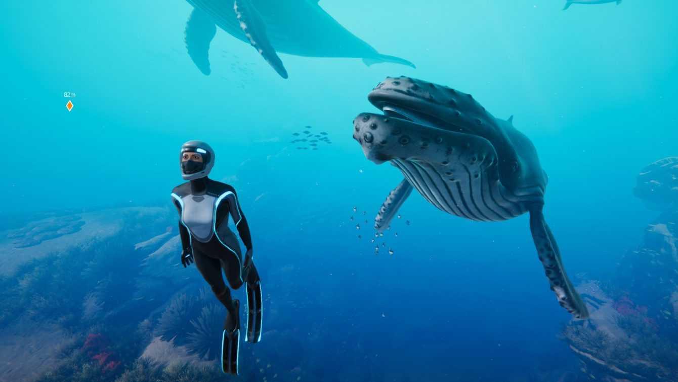 Aparte de la reseña azul, ¡bajo el mar!