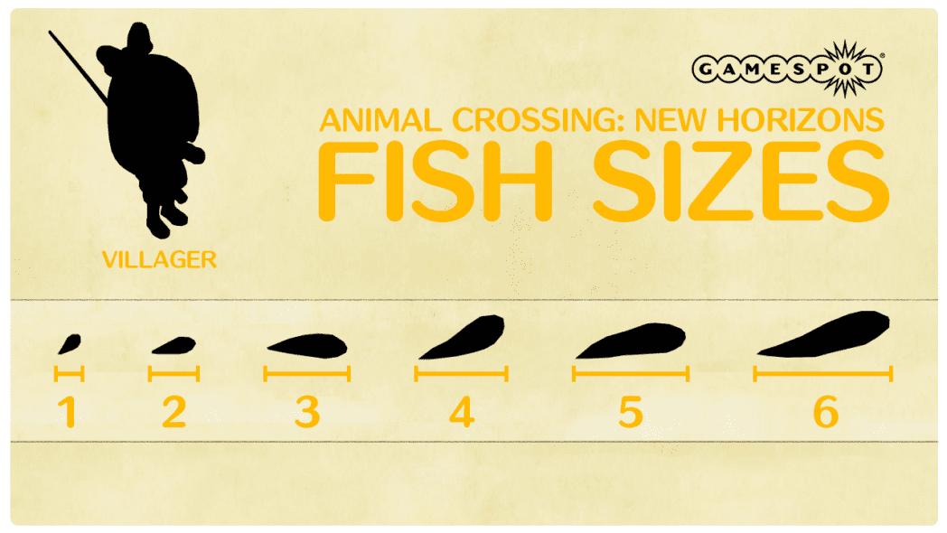 cruce de animales nuevos horizontes peces e insectos de julio